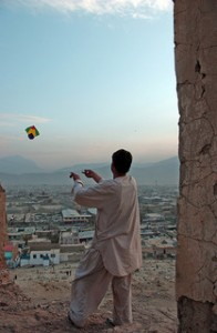 afghan boy kite